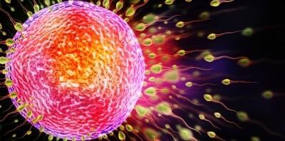 TCM and IVF/ICSI